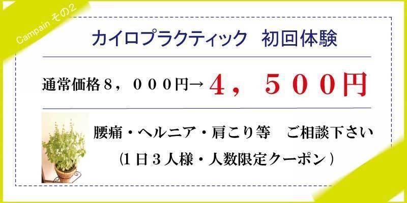 千葉県・松戸のカイロプラクティック・整体はライフバランス